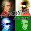 """Al via la rassegna """"Amadeus in Concerto"""""""