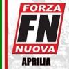 Critiche al Governo Renzi