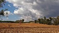 Banca della terra, 5000 terreni della Regione per giovani nuove attività imprenditoriali