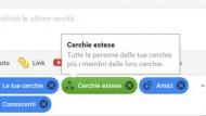 Come usare le cerchie di Google+