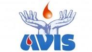 Urge sangue per i feriti di Amatrice: come donare