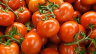 10 motivi per mangiare i pomodori