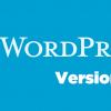 Clifford, il Nuovo WordPress 4.4