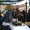 Raccolta fondi alla serra fotovoltaica di Via Giustiniano