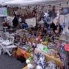 Questa domenica mercatino straordinario in Piazza Roma