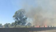 Pontina, sterpaglie in fiamme tra Genio Civile e Campoverde: traffico in tilt.