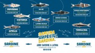 Le Sardine sbarcano nella Provincia di Latina: tappa ad Aprilia.