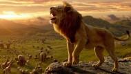 """Cinema sotto le stelle, terza serata con """"Il re leone""""."""