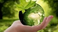 Aprilia : arrivano le giornate green nelle scuole.
