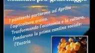 Votato ieri il gemellaggio tra Aprilia e l'isola di Pantelleria.