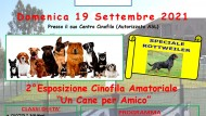 """Esposizione di bellezza """"Un cane per Amico"""": l'evento il 19 settembre."""