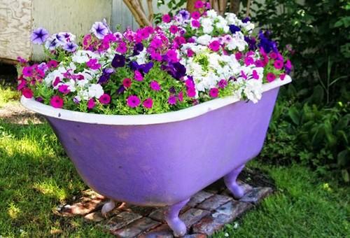 Vasca Da Bagno In Plastica : Il giardino in estate news di aprilia in tempo reale