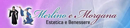 logo merlino e morgana