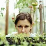I giovani e la nuova agricoltura