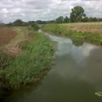 Campoverde: nessuna manutenzione del fosso Crocetta Alto