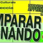 Ex Mattatoio: dal Circo alla Musica.