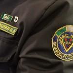Quinto Corso per Guardie Zoofile