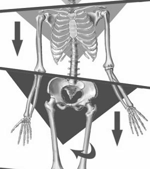 Asimmetrie posturali