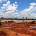 Safari al Tsavo Est, Kenya