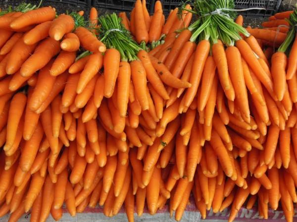 I benefici delle carote
