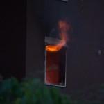 Ex Canebi: il post-incendio