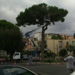 Al via il taglio in Piazza della Repubblica