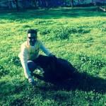 Parco Manaresi, addio erbacce: volontari in azione