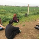 Amici di Birillo: porte aperte agli educatori cinofili