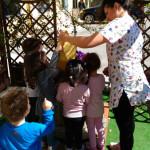 L'Asilo Baby Club e l'Aula Verde
