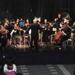 """Un concerto dell' orchestra """"Diapason"""" per """"Crepino gli artisti"""""""