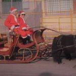Una squadra di Babbi Natale visita le scuole di Campo di Carne