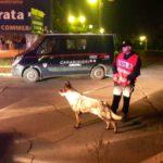 Controlli in strada, fermi per droga e guida senza patente