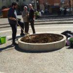 Le domande di Aprilia possibile sui progetti del verde pubblico