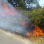 Incendio a bordo strada a Campo di Carne