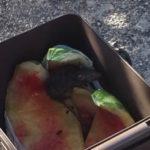 Aprilia: persiste la presenza dei topi all'interno del Comune.