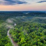 #SavetheAmazon, a Latina la raccolta fondi in soccorso dell'Amazzonia.