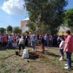 """""""Giornata dell'albero"""": l'iniziativa ad Aprilia il 23 novembre."""