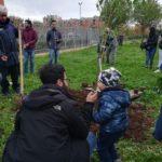 Giornata mondiale albero, lodevole iniziativa nel quartiere Toscanini.