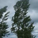 Allerta meteo diramata per oggi: venti forti e di burrasca.