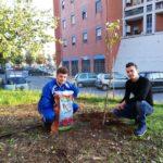 'Il Bosco Urbano' per un Aprilia più green: inaugurata una nuova area verde