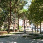 Aprilia, il 3 gennaio disposto il divieto di sosta in Via dei Mille.
