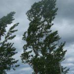 Allerta Protezione Civile per forti venti da oggi e per le prossime 18-24 ore.