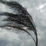 Allerta meteo a partire da oggi: previsti venti per le prossime 24-36 ore.