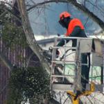 Aprilia, lavori verde pubblico: divieto di sosta in alcune zone del centro.