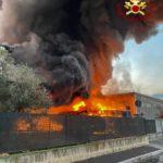 LOAS: Nostra Italia parla del danno ambientale dell'incendio.