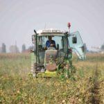 Regione Lazio: 38 milioni di euro per la nuova programmazione europea per l'agricoltura.